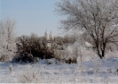 Село Новоселицкое
